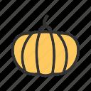 halloween, pumpkin, pumpkins, fruit