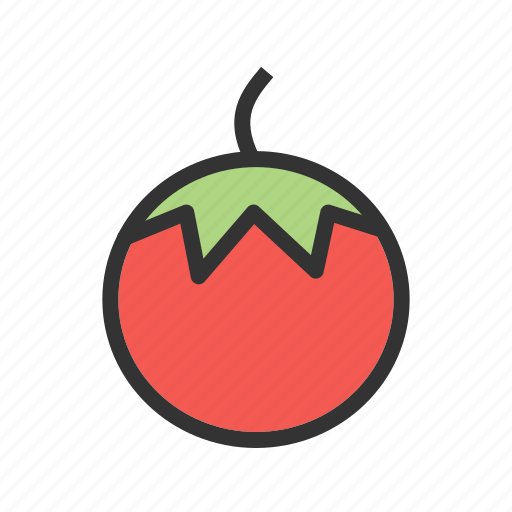 food, fresh, ingredient, red, slice, tomato, vegetable icon