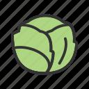 cabbage, food, vegetable, fruit