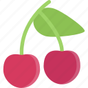 cherry, cooking, food, fruit, product, shop, supermarket icon