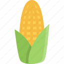 cooking, corn, food, product, shop, supermarket, vegetable icon