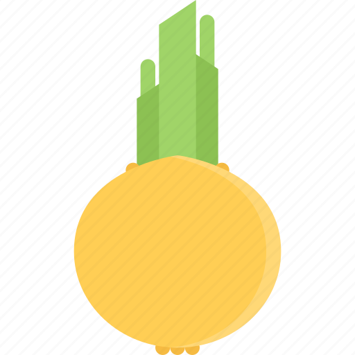 cooking, food, onion, product, shop, supermarket, vegetable icon