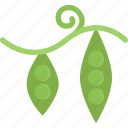 cooking, food, peas, product, shop, supermarket, vegetable icon