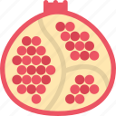 cooking, food, pomegranate, product, shop, supermarket icon