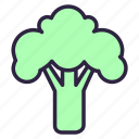 broccoli, cabbage, cauliflower, cole, food, healthy, vegetable icon