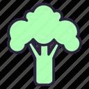 broccoli, cabbage, cauliflower, cole, food, healthy, vegetable