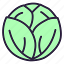 cabbage, cauliflower, cole, food, green, salad, vegetable icon