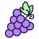 bunch, bunch of grapes, cluster of grapes, food, fruit, grape, healthy icon