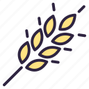 barley, corn, food, spica, wheat icon