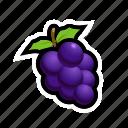 food, fruit, grapes