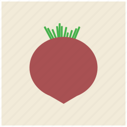 beet, food, fresh, healthy, root, vegetable icon