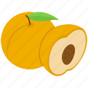 food, fruit, healthy food, nectarine, peach icon