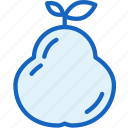 food, pear icon