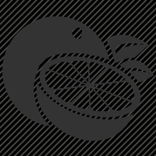 Dessert, food, fruit, juice, orange icon - Download on Iconfinder