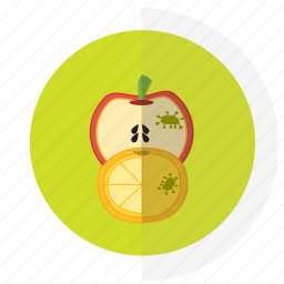 flat design, food, icon6, safety icon