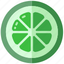 lime, sour, spice, spices icon