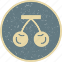 cherry, dessert, eat, food, fresh, fruit icon