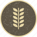 corn, food, grain, wheat icon