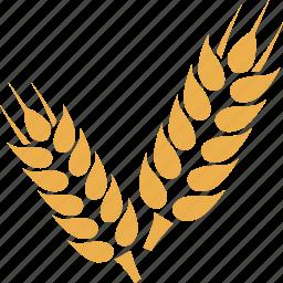 crop, grain, wheat, wheat crop, wheat grain icon