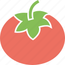 food, ingredient, tomato, vegetable icon