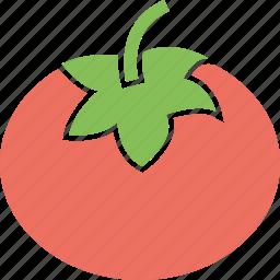food, ingredient, tomato, vegetable icon