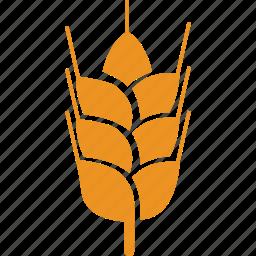 cereal grain, food, grain, wheat icon