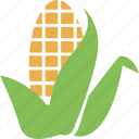 cob, corn, food, maize, vegetable icon