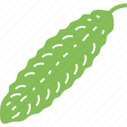 bitter gourd, bitter squash, food, pear, vegetable icon