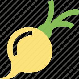food, turnip, vegetable, white turnip icon