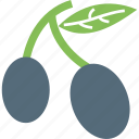 cherry, food, fruit, wild cherry icon