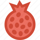 food, fresh food, fruit, healthy, healthy food, pomegranate icon
