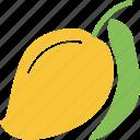fresh, fruit, mango, mango with leaf