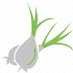 food, food ingredient, green onion, onion, vegetable icon