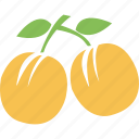cherry, food, fresh cherry, fruit, fruits, wild cherry icon
