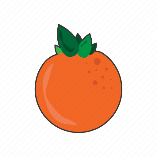 Fruit, orange icon - Download on Iconfinder on Iconfinder