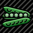 bean, naturalpeasstring, seed icon