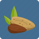 almond, macadamia, nuts, organic, peanut, vegetarian, whole icon