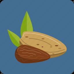 almond, macadamia, nuts, organic, peanut, vegetarian, whole icon