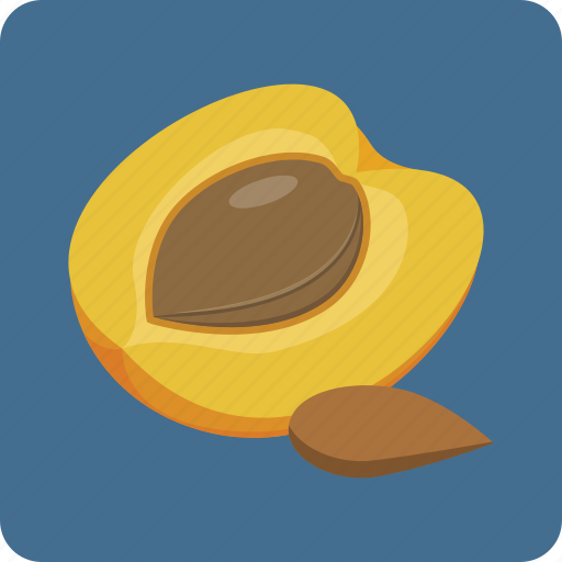 apricot, fruit, organic, peach, seed, summer, sweet icon