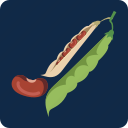 beans, food, health, nutrition, pods, soybeans icon
