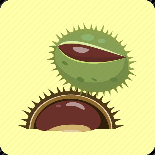 barb, chestnut, crust, husk, nut, seeds, vegetable icon