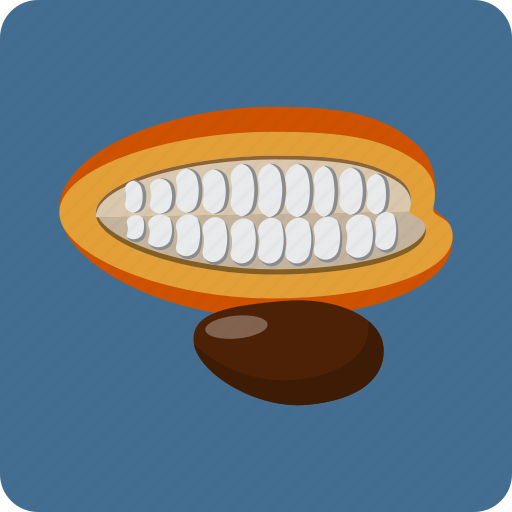 bean, cacao, cocoa, food, natural, seeds, tropical icon