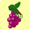 food, fresh, fruit, grape, juice, natural icon
