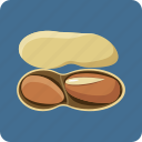 earth-nut, food, hazel, hazelnut, nut, peanut, vegetarian icon