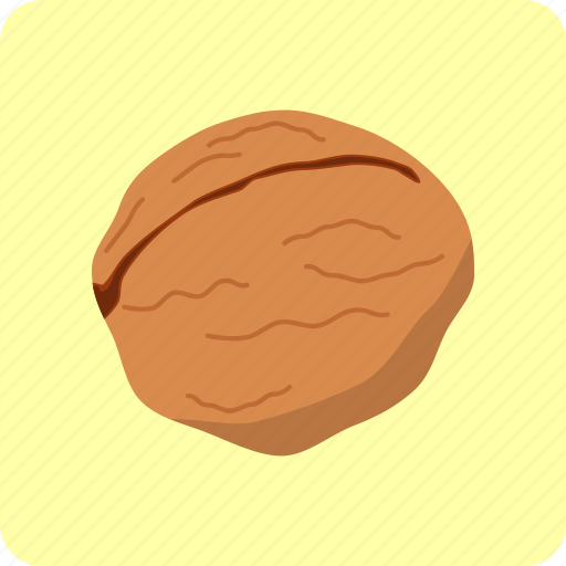 dried, food, fruit, kernel, nutrition, seed, walnuts icon