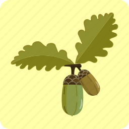 acorn, autumn, forest, leaf, oak, origins, seed icon