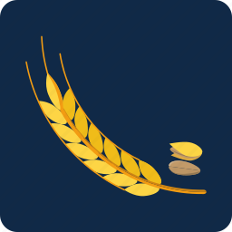 agriculture, cereals, fiber, food, gluten, seed, wheat icon