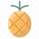 fruit, fruits, juice, pineapple icon