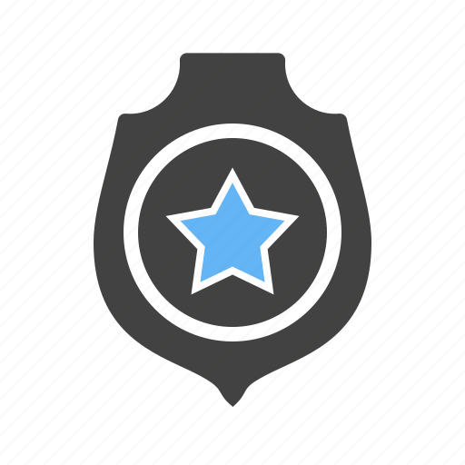 army, badge, for, military, officers icon