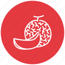 food, fresh, fruit, melon icon